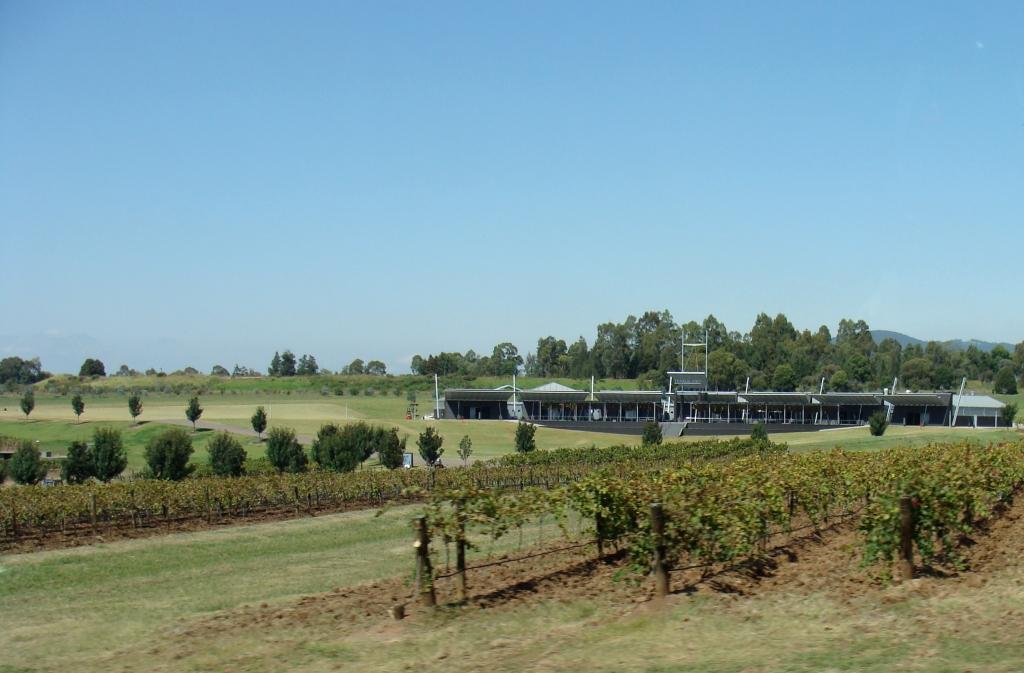 1205919412_wineyards2.jpg